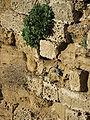 Apollonia Walls IMG 8346.JPG