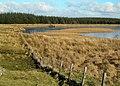 Approaching Craigdow Loch - geograph.org.uk - 1705986.jpg