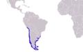 Arctocephalus australis distribution.png