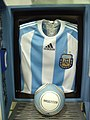 Argentinian Official Player's Jersey.jpg
