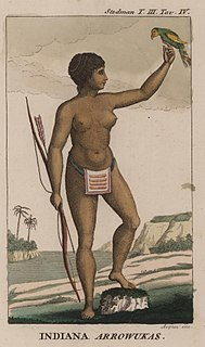 Arawak group of indigenous peoples of South America and historically of the Caribbean. Specifically, the term Arawak has been applied at various times to the Lokono and the Taíno, all of whom spoke related Arawakan languages