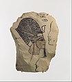 Artist's Sketch of Ramesses IV MET DP109395.jpg