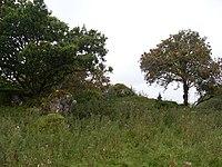 Auchencloigh castle - geograph.org.uk - 1475791