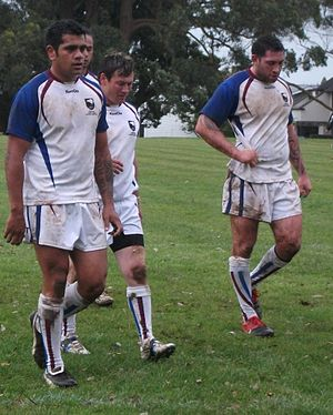 Auckland rugby league team - Auckland zone in 2010