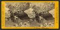 Bacon Chamber, from Robert N. Dennis collection of stereoscopic views.png