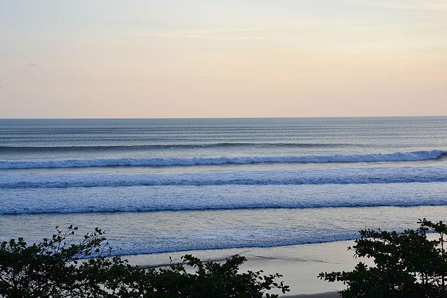 The Surf Room Menu