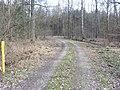 Barnbruch 04.04.2010 - panoramio - Christian-1983 (10).jpg