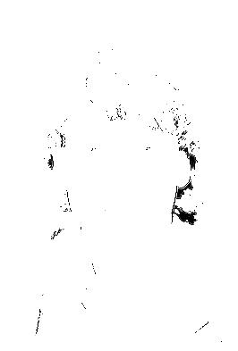 Bas Westerweel in 1991