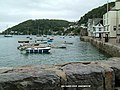 Bayards Cove Dartmouth - geograph.org.uk - 917832.jpg