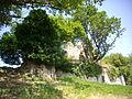 Beaulieu - château de Thynières (4).JPG