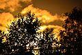 Beautiful Midnight Sun (23958868839).jpg
