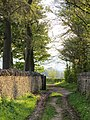Beech Avenue ^ Stone Walls - May 2012 - panoramio.jpg