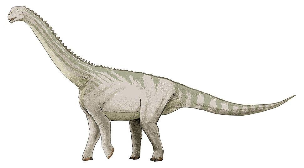 Bellusaurus-v1