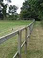 Bent Fencing - geograph.org.uk - 1465325.jpg