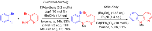 Synthesis of benzo[4,5]furopyridines