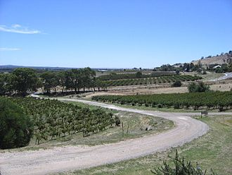 Barossa Valley - An overview of the Bethany vineyard, first planted in 1852. Bethany was the first settlement in the Barossa region.