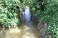Bief Cheval Queue Route Vonnas St Genis Menthon 2.jpg