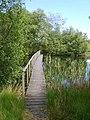 Bigland Fishery - geograph.org.uk - 1353472.jpg