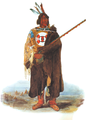 Bodmer Indian 1833.png