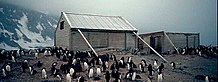Two wooden structures surrounded by penguins. The larger, on the left, has a pitched roof and is supported by timber braces, the smaller, on the right, has no roof. Snowy slopes are visible in the background.