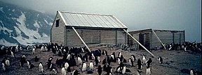 Two wooden structures surrounded by penguins. The larger, on the left, has a pitched roof and is supported by timber braces. The smaller, on the right, has no roof. Snowy slopes are visible in the background.