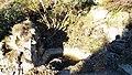 Botanischer Garten München Alpinum Felsenbrunnen.jpg