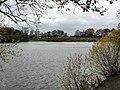 Brereton Heath Lake - geograph.org.uk - 1588994.jpg
