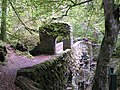 Bridge over the Braan - geograph.org.uk - 1008187.jpg