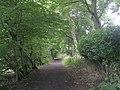 Bridleway - The Fairway - geograph.org.uk - 1432028.jpg