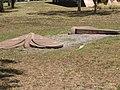 Bronze Buggong Moths Embedded in Australia's Landscape.jpg