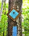 Bruce Trail - side trail.JPG
