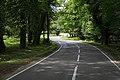 Burley Road in Hincheslea Wood - geograph.org.uk - 182213.jpg