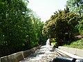 Bush Gardens - 35.JPG