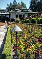Butchart Gardens - Victoria, British Columbia, Canada (29111662490).jpg
