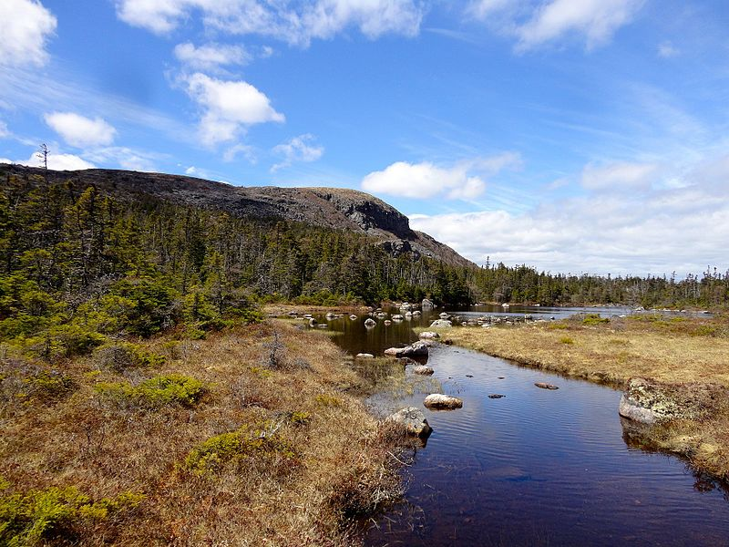 File:Butterpot Mountain, located in Butterpot Provincial Park, Salmonier, Newfoundland.jpg