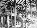 COLLECTIE TROPENMUSEUM In een fabriek wordt het vezelleverende gewas sisal bewerkt TMnr 10011403.jpg