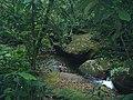 Cachoeira do Gino - Reserva Indígena Rio Silveiras - panoramio.jpg