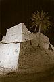 Caesarea- the odd Palm tree (7975190697).jpg