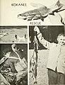 California fish and game (20326374848).jpg