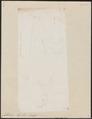 Callichrous pabo - 1700-1880 - Print - Iconographia Zoologica - Special Collections University of Amsterdam - UBA01 IZ14600045.tif