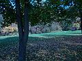 Campingplatz am Radlerhaus in Obergurig (4).JPG