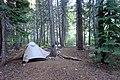 Campsite on Palisade Creek (42506714085).jpg