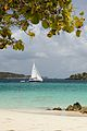 Caneel Bay Turtle Bay Beach 1.jpg