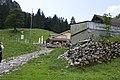 Canton de Schwytz - panoramio (39).jpg