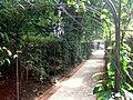Casa das Rosas, Jardim 02.JPG