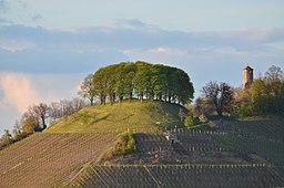 Castell Schloßberg mit Turm 001