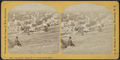 Cayuga Street, Ithaca, N.Y. (from South Hill), from Robert N. Dennis collection of stereoscopic views.png
