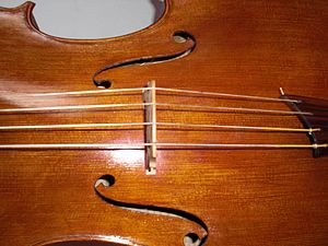 Cello - A baroque cello strung with gut strings. Note the absence of fine-tuning pins on the tailpiece.