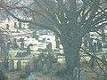 Cemetery Bath - geograph.org.uk - 414479.jpg