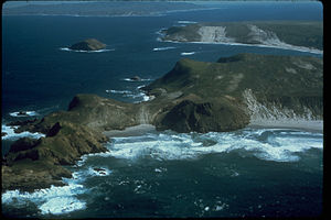 Channel Islands National Park CHIS1283.jpg